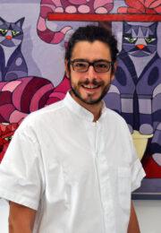 Dr. Nicolò VERCELLINI